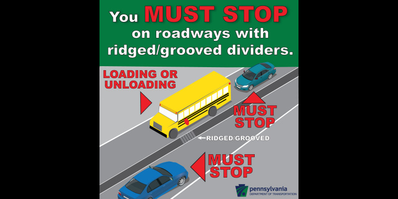Image for School Bus Stopping Law